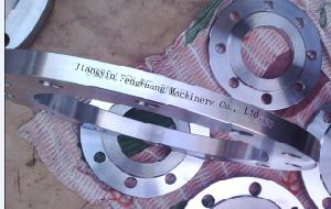 S2205 Welding Plate Forging Flange pictures & photos