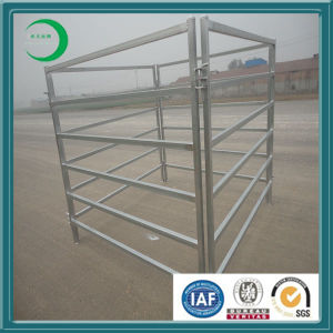 Cheap Galvanized Cattle Panel pictures & photos