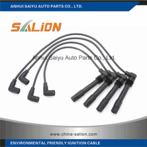 Ignition Cable/Spark Plug Wire for VW Bora Abm68 pictures & photos