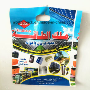 Custom Printed HDPE/LDPE Plastic Punched Handle Bag pictures & photos