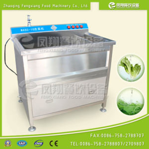 Small Type Cabbage Vegetable Disinfecting Washing Machine with Ce Approved pictures & photos