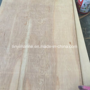Natural Birch Packing Grade Plywood for Box or Decoloration pictures & photos