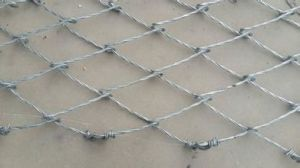 Spider Shaped Slope Protection Netting pictures & photos