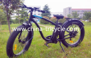 250W Motor Lithium Battery for Electric Bike (SP-EB-14) pictures & photos