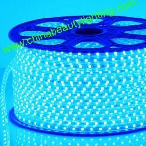LED 220/110V ETL LED Strip LED Light LED pictures & photos