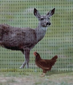 Professional Deer Fence Net of Stretch Net pictures & photos