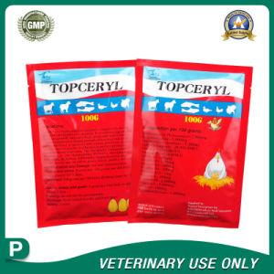 Veterinary Drugs of Erythromycin thio Oxytetracycline Powder(100g) pictures & photos