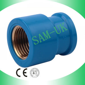 PVC Plumbing Fitting Female Coupling with Brass pictures & photos