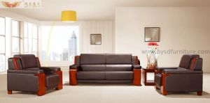 Luxury Antique Living Room Leather Sofa pictures & photos