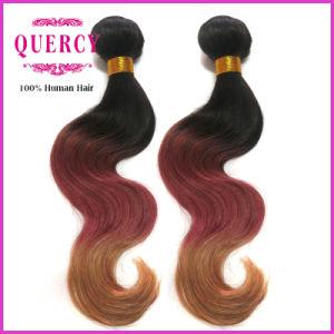 Quercy Hair Ombre Color Brazilian Hair Extension Body Wave 100% Brazilian Virgin Human Hair pictures & photos