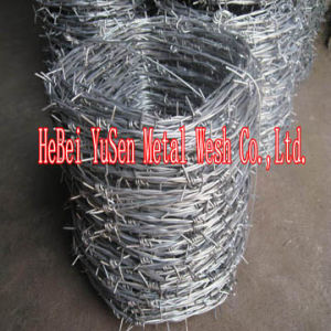 Barbed Wire, , Galvanized Barbed Wire, PVC Barbed Wire pictures & photos