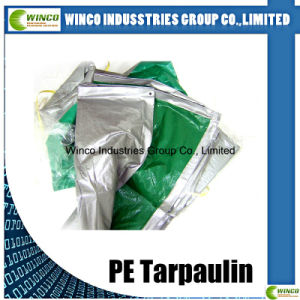 Clear Plastic Cover PE Tarpaulin Sheet, Waterproof and Fire Resistant Tarpaulin Rolling Fabric Wholesale pictures & photos