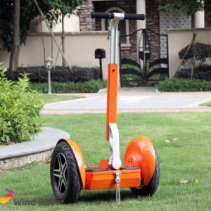 Wind Rover Best 2 Wheel Electric Standing Kid Scooter pictures & photos