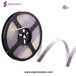 China Outdoor IP65 Colorful SMD5050 Flexible LED Strip for Building pictures & photos