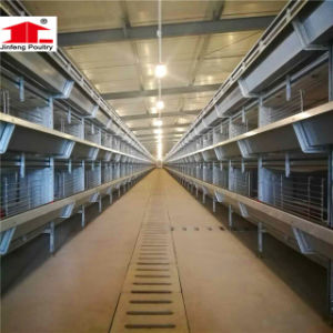 H Type Chicken Egg Laying Cages for Prefab Chicken House pictures & photos