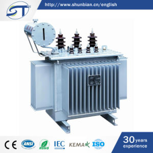 IEC60076 Standard 3 Phase Oil Type Distribution Transformer, 800kVA 11kv pictures & photos