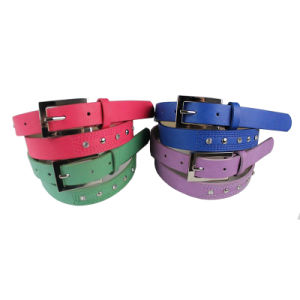 Women′s Fashion Stud Belt (ZSB2540)