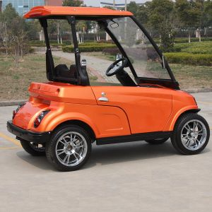 EEC Certificated Factory Price Offer Two Seater Mini Cars for Sale (DG-LSV2) pictures & photos