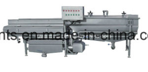 Hot Sale in Philippines Bubble Washing Machine for Leaf Vegetable pictures & photos