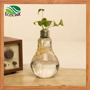 Light Bulb Shaped Glass Vase for Table Decoration pictures & photos