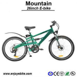 Shock Absorber 36V Electric Bike 250W Motor Bicycle E-Bicycle E-Bike (PE-TDE05Z)