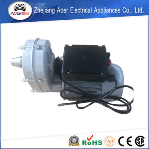 AC Single Phase 220V Mini Electric Power Motor pictures & photos