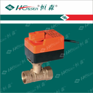 D Q F- A1 Brass Motorized Ball Valve with Actuator pictures & photos