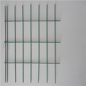 PVC Coated Welded Wire Mesh (AH-12017)