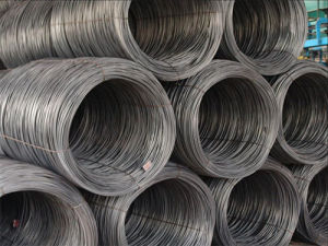 High Carbon Steel Wire Rod (SAE1006, SAE1008) pictures & photos