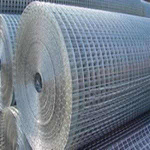 Electro Galvanized Welded Wire Mesh (HDW02) pictures & photos