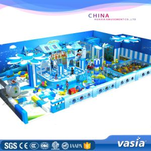 ASTM Standard Approved Indoor Kids Entertainment Play Center pictures & photos