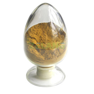 Powdered Rhodiola Rosea Extract Salidroside Buy pictures & photos
