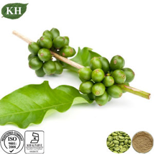 Weight Loss Green Coffee Bean Extract Total Chlorogenic Acid pictures & photos