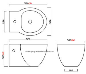 Ce Wash Down Wall Hung Bidet Whb16002 pictures & photos