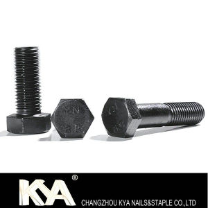 (M5-M100) Hex Bolt & Nut for Industry pictures & photos