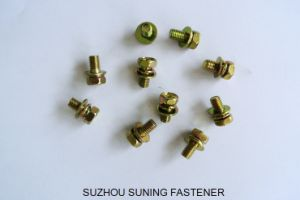 Hexagon Head Bolt Spring and Plain Washer Assemblies pictures & photos