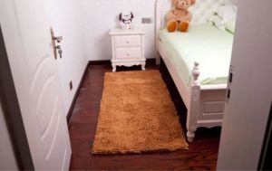 Shaggy Chenille High Pile Living Room Carpet pictures & photos