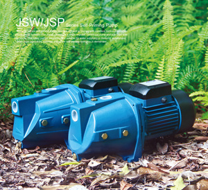 Italy Style Jet/Jsw Water Pump pictures & photos