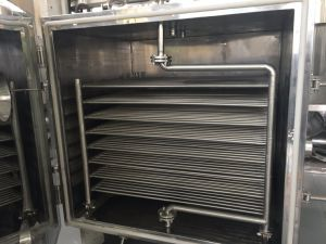 Fzg-10 Vacuum Oven for Food pictures & photos