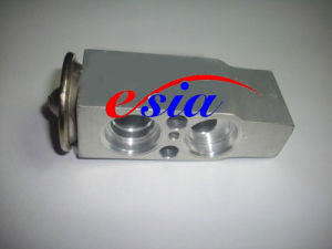 Auto AC Evaporator Expansion Valve for M. Benz/MB/Mecedes Benz 1248300384 pictures & photos