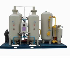Pressure Swing Adsorption (PSA) Nitrogen Generator (apply to pharmaceuticals industry) pictures & photos