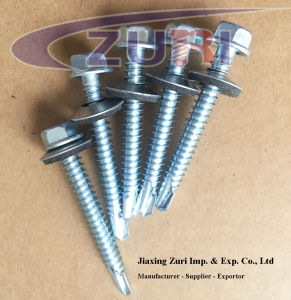 "Self Drilling Roofing Screw with EPDM Washer#14*3/4"" pictures & photos"