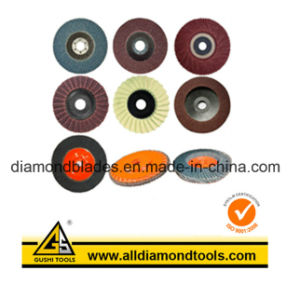 Abrasive Flap Disc pictures & photos