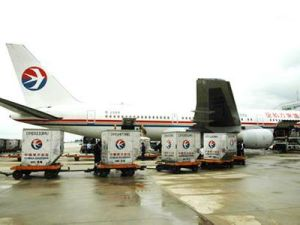 Air Freight From China to France by Air France pictures & photos