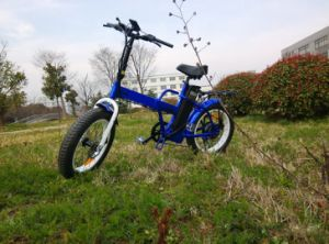 20′′ 250W Fat Tire Folding Electric Beach Bike with En15194 pictures & photos