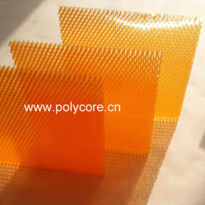 Energy Saving Plastic Honeycomb Panel-Orange 6.0 pictures & photos