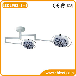Veterinary Cold Light Operating Lamp (Common Arm) (LEDLP02-5+5) pictures & photos