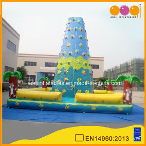 Inflatable Rock Climbing Tower (AQ1908-1) pictures & photos