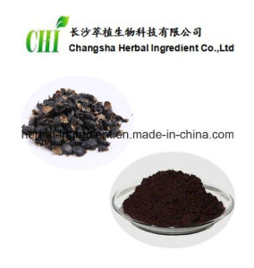 Black Soybean Hull Extract Anthocyanin 5%-25% pictures & photos