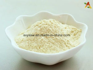 Natural High Quality Anti Aging Ginseng Leaf Extract
